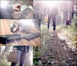 Wood Of Sweden