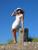 Evelina_pelare