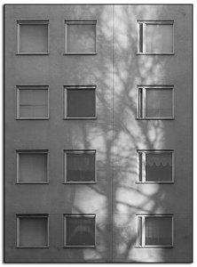 grå-333.jpg