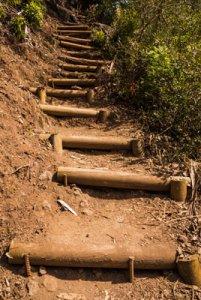 trappa upp.jpg