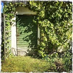 DörrarPortar-150103-IMG_0398.jpg