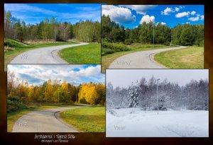 Årstiderna_svända-vägen_lyktstolpe_170116Golden_Egg_Landscape_HB.jpg
