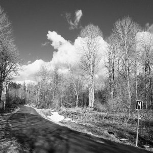 FS-idag-19-03-26.jpg