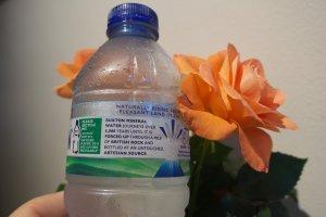 Gammalt vatten 2422.jpg