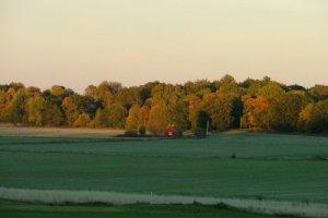 07 skog, fält och stuga,cut 15-10.jpg