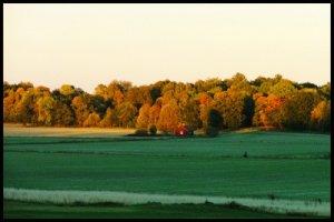 07 skog, fält och stuga,cut2,ram,ps2.jpg