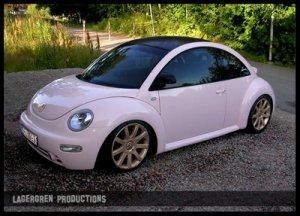 beetleefter.jpg